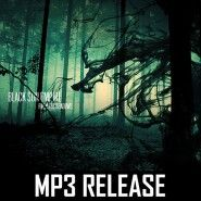 Black Sun Empire - From The Shadows (MP3)